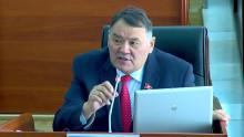 Депутат Жолдошбаев: коронавирус менен контрабанда бир тууган экен