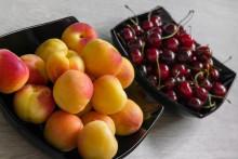 Узбекистан и Таджикистан могут потерять весь урожай абрикоса и черешни в 2021 году