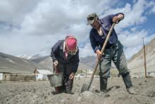 Дефицит электроэнергии ставит под угрозу урожай в Таджикистане